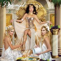 Dreamgirl 2014 コスチュームカタログ