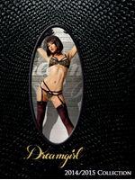 Dreamgirl 2014セクシーランジェリーカタログ